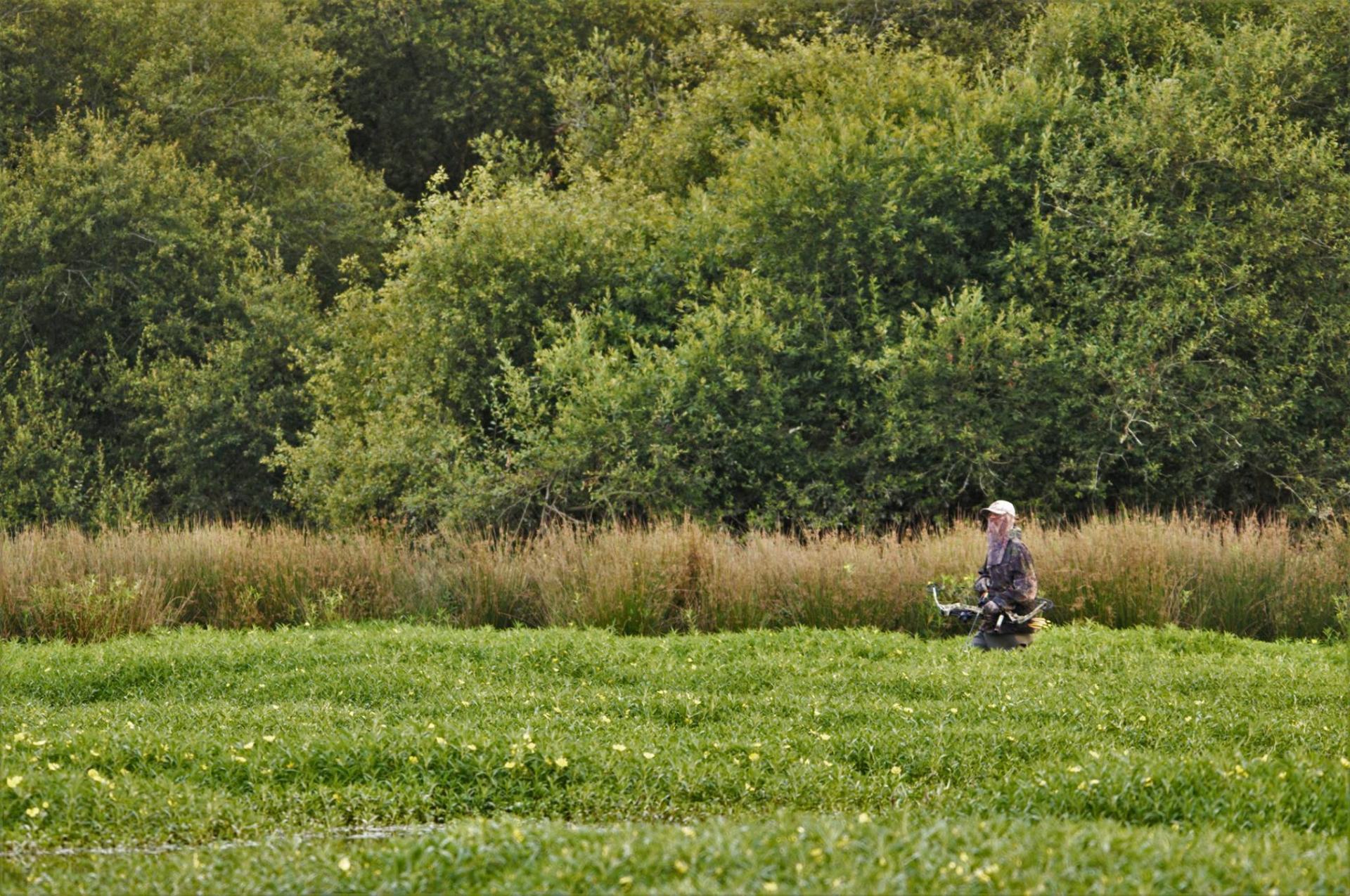 Pontonx sur Adour - le 13/07/18 - Photo de Baptiste